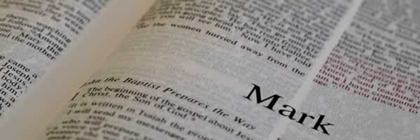 we believe the bible
