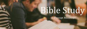 Bible Studies Banner